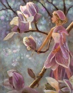 Magnolia faerie