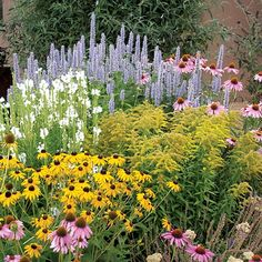 Summer Dreams Pre-Planned Garden - High Country Gardens focuses on water-wise xeriscaping. Check out their preplanned gardens if you're having a hard time deciding what plants to buy. Plants, Cottage Garden, Country Gardening, Bee Garden, Perennials, Flower Beds, Dream Garden, High Country Gardens, Garden Planning