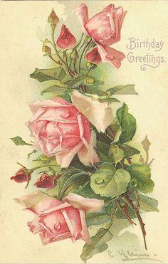 pretty pink roses ~ Birthday Greetings :)