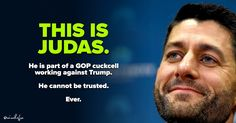 Paul Ryan is Judas. He will hurt Trump any way he can// He's  also hurting America.