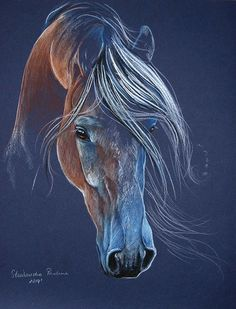 Horse drawing with long flowing mane by Paulina Stasikowska