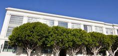 Soma South Beach loft development at 601 Fourth street in San Francisco.  Lofts in San Francisco, San Francisco Lofts, Bay Area,  Marin Modern Real Estate, San Francisco Modern Real Estate, Modern Homes, California Lofts, loft living, condos in San Francisco, brick and timber, live work, warehouse conversion, SOMA