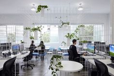 Completed in 2015 in Melbourne, Australia. Images by Christine Francis. Visualisation and animation studio Squint/Opera render reality every day. SIBLIING's fit-out for their new Australian headquarters reinforces this. Australian Interior Design, Interior Design Awards, Studio Interior, Luz Natural, Wireframe Design, Workspace Design, Design Research, Office Interiors, Corporate Interiors