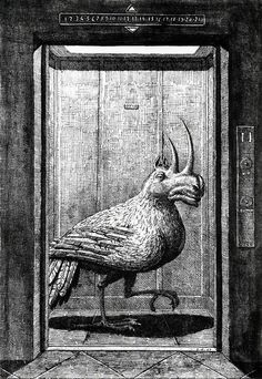 Domenico Gnoli - Modern Bestiary, 1968 (1) by Aeron Alfrey, via Flickr