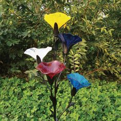 I Just Bought Falling For Mushrooms Solar Art From Coloriscape By Viz Glass  On Sneakpeeq!   Decorating   Pinterest   Solar
