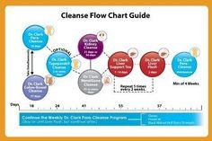 Kidney Cleanse 3 Week Program 10 Items Health Personal Care