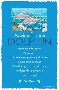 """""""Find your life's porpoise""""  Advice from a Dolphin 5' x 8' frameable art postcard"""