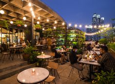 Hause Rooftop provides a green, secluded space that feels miles away from the relentless buzz of Jakarta.