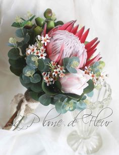 Protea wedding bouquet King protea, pink ice protea, Geraldton wax, gumnuts and Australian native foliage Rustic, native wedding flowers is part of Protea wedding - LaPlumeDeFleur Flor Protea, Protea Bouquet, Protea Flower, Bouquet Flowers, Wax Flowers, Blue Flowers, Fresh Flowers, Protea Wedding, Bridal Bouquets