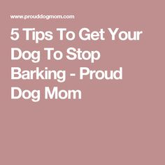 5 Tips To Get Your Dog To Stop Barking - Proud Dog Mom
