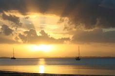 Fraser Island, Australia  #fraserbarges #fraserisland #queensland #australia www.fraserislandferry.com.au