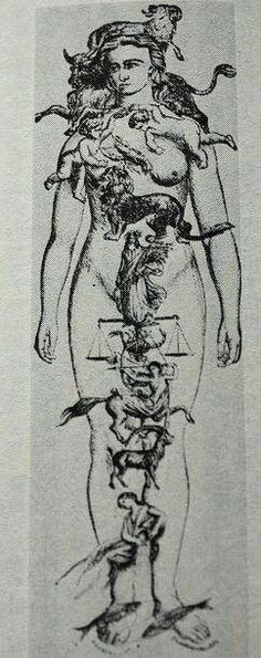Map of Zodiac Signs on Human Body Medical Astrology, Zodiac Signs Astrology, All Zodiac Signs, 12 Zodiac, Healing Images, Medieval Paintings, Body Map, 3rd Eye, Yoga Art