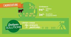 Secteur agricole : quelques solutions pour moins polluer l'air