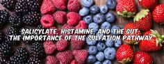 Salicylate, Histamine, and the Gut: The Importance of the Sulfation Pathway