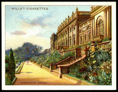 "Wills's Cigarettes ""Beautiful Homes"" (series of 25 large cards issued in Harewood House, Yorkshire ~ ""a home of the Earl of Harewood"" Art Pictures, Art Pics, Random Pictures, Cigarette Brands, Cigarette Box, Harewood House, Collectible Cards, Historic Homes, Popular Culture"