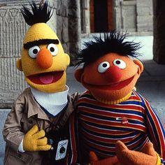 The same street Sesame Street Memes, Sesame Street Muppets, Mejores Series Tv, Bert & Ernie, Fraggle Rock, Muppet Babies, Marionette, The Muppet Show, Jim Henson