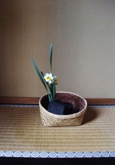 Ikebana - daffodil and charcoal 暖