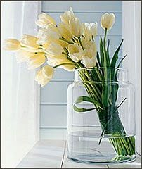 white  & pale yellow tulips tied in a vase