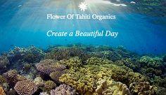Organic/Vegan Hair Masks infused with 100% Authentic Monoi Oil from Tahiti. All-Natural and Cruelty Free Hair Masks, Tahiti, Beautiful Day, Cruelty Free, Organic, Vegan, Natural, Flowers, Bloemen
