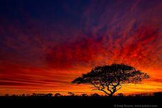 Sunrise in Nantucket, by Greg Hinson