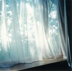 川内倫子写真展「Illuminance」 - デジカメWatch