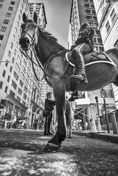 Gábor Erdélyi - My Black And White Walks In New York