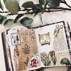 Instagram Art Journal Pages, Journal Ideas, Bujo, Beautiful Notes, Mixed Media Journal, Nature Journal, Sketchbook Inspiration, Book Of Shadows, Book Making