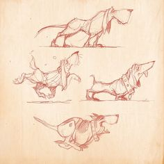 Dog Sketches  #sketch #sketchoftheday #dog #dogs #daschund #drawing #animation