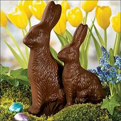 Fannie Farmer  chocolate rabbits in every Easter Basket