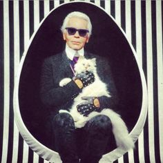 The 7 Most Social Media-Savvy Pets - Karl Lagerfeld's cat Choupette