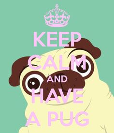KEEP CALM AND HAVE A PUG