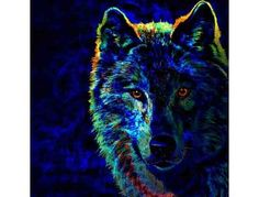 89-C: 'Lone Wolf' by WBK: LARGE CANVAS! 40.00' x 39.625'