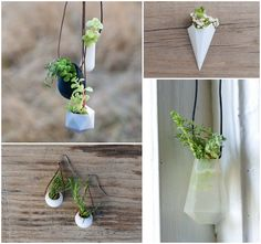 I was just thinking how cool it would be to have a little plant that you could wear and there it is. I want one of these little puppies.