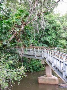 Iguazu falls: which side to visit? Iguazu Falls, Garden Bridge, South America, Circuit, Outdoor Structures