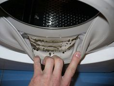 How to Remove Dangerous Mold and Unpleasant Odors from Your Washing Machine with 2 Ingredients If you suddenly start to notice that your clothes get a strange odor after washing, and there are black stains between Diy Cleaning Products, Cleaning Hacks, Cleaning Supplies, Cleaning Mold, Weekly Cleaning, Deep Cleaning, Remove Black Mold, How To Remove, Clean Your Washing Machine