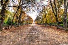 L'automne, le jardin du Luxembourg à Paris :)