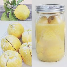 Preserved lemons make a great DIY gift for the holidays! Thin strips an be added to braised meat, such as lamb, near the end of the cooking process or lemons can be finely chopped with a shallot and parsley, mashed with olive oil or butter and spread on top of cooked seafood or chicken.  #diy #primal #paleo #ediblegifts