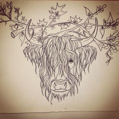 Highland Cow Painting, Highland Cow Art, Scottish Highland Cow, Highland Cattle, Cow Drawing, Line Drawing, Drawing Sketches, Painting & Drawing, Highland Cow Tattoo