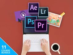 Netspot pro discount coupon for lifetime license mac windows 80 the complete adobe mastery course bundle discount lifetime access 98 off fandeluxe Choice Image