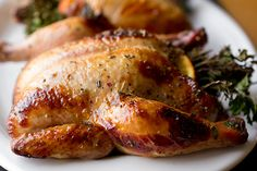 Sweet Citrus and Herb Bouquet-Stuffed Cornish Game Hens with Orange Marmalade Glaze Cornish Hen Recipe, Cornish Game Hen, Cooking Cornish Hens, Recipe Cover, Sweet Home, Roasted Garlic, Recipe Collection, The Fresh, Entrees
