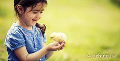 Educación humanitaria: otra forma de educar en valores      La educación humanitaria afirma que educar en la tolerancia y la no violencia debe incluir nuestras relaciones con el entorno y el resto de animales. http://blog.tiching.com/educacion-humanitaria-otra-forma-educar-valores/?utm_content=CMPEducacionHumanitaria&utm_medium=referral&utm_campaign=cm&utm_source=twitter