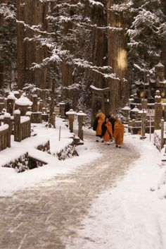 Mount Koya (Koya-san in Japanese) is one of Japan's most sacred mountains, and the best place in Japan to spend a night in a shukubo (temple lodging).