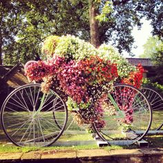 creative bicycle flower planters serving as bicycle sculptures in gardens