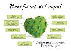 El Rincon Del Chef: Beneficios Del Nopal.