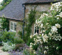 english gardens photos | English Garden, cottage, cottage garden, English Garden in DERBYSHIRE