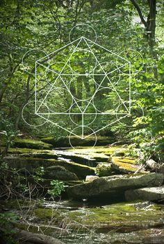 Sacred Geometry & Nature 8x12 Digital Print by MelissaAnneDesigns, $23.00