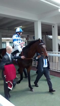 Al Kazeem today at hippodrome de Longchamp... Good job Champion ! #horseracing