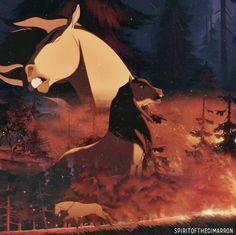 Spirit The Horse, Bambi Disney, Dreamworks Animation, Cartoon Movies, Horse Art, Wild Horses, Furry Art, Animes Wallpapers, Mustang