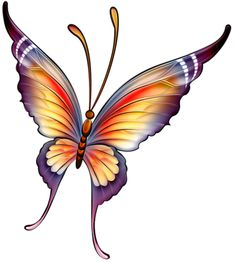 A beautiful butterfly Butterfly Drawing, Butterfly Pictures, Butterfly Wallpaper, Butterfly Kisses, Butterfly Cards, Butterfly Wings, Coloring Books, Coloring Pages, Beautiful Butterflies