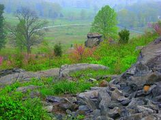 View from Little Round Top towards the Wheatfield. Gettysburg.